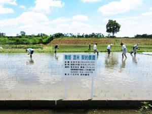 契約栽培米の推進